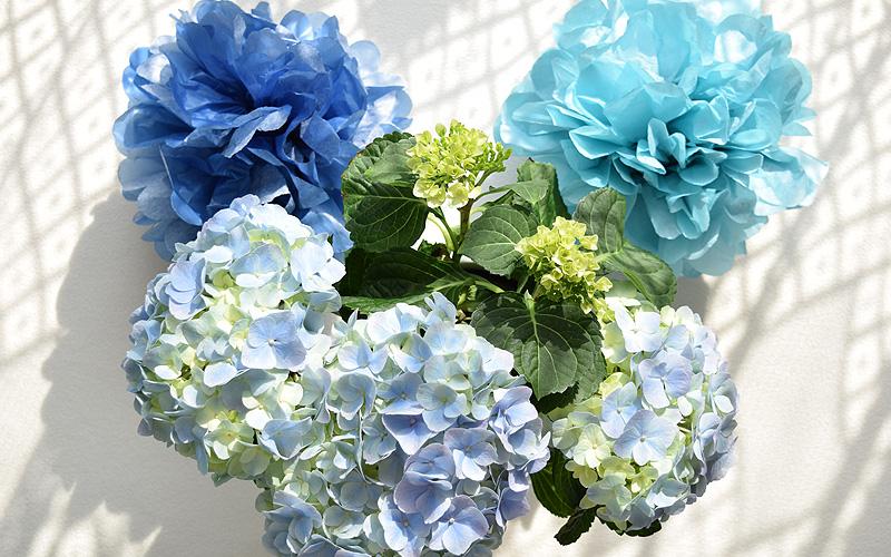 Papírové květy pompom